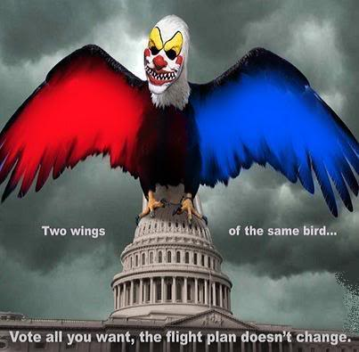 Two sides same bird.jpg