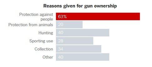 gun ownership.jpg