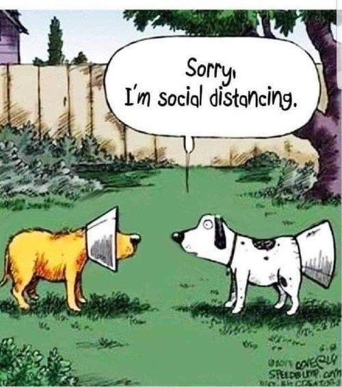 social_distance.jpg.7202cf822b2a7a617706bc62da34773e.jpg