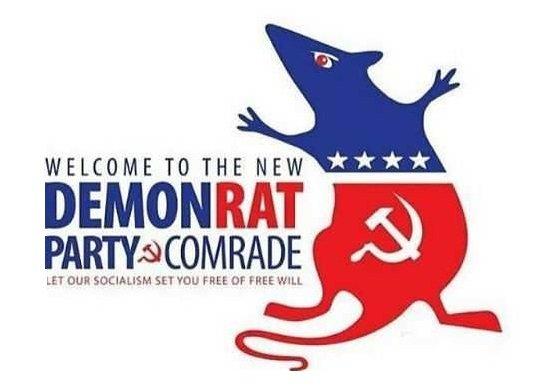 RAT 1.jpeg