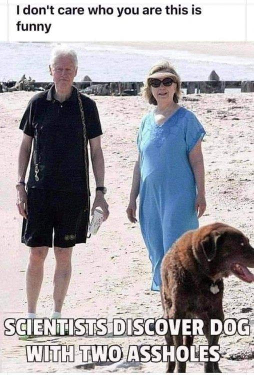 DamnClintons.jpg