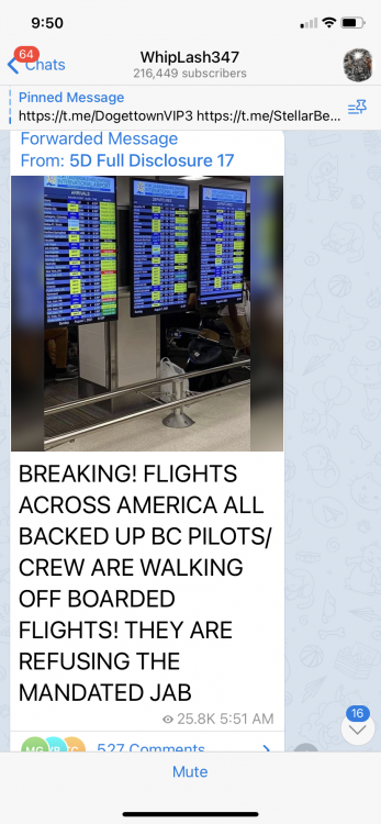 Airlines2.png